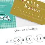 IDENTITÉ VISUELLE carte de visite et logos